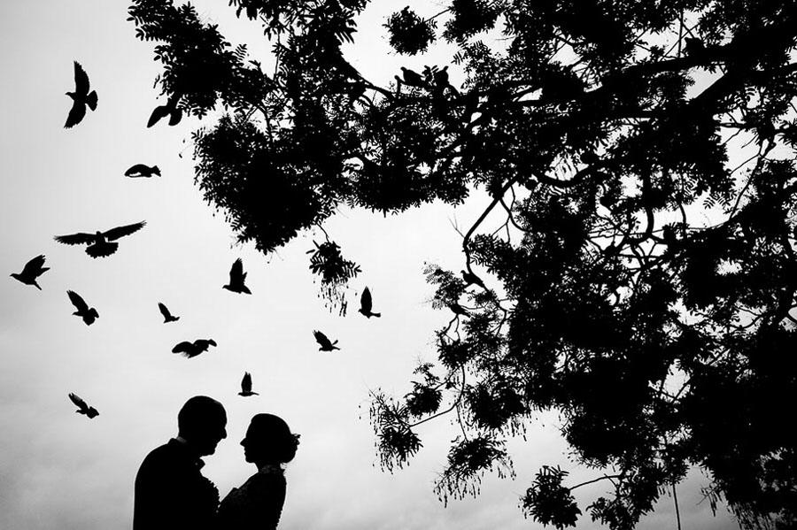 wps-2016-best-wedding-photographer-in-the-world-16