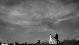 vignes mariage domaine de vavril